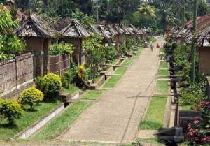 Bali lanes